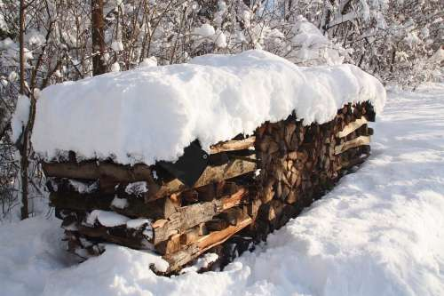Winter Snow Firewood Forest Trees Snow Landscape