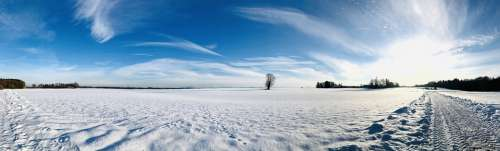 Winter Snow Nature Landscape Cold Snowfall