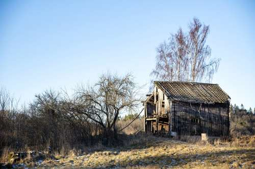 Winter Hovel Old Barn Tree House Agricultural
