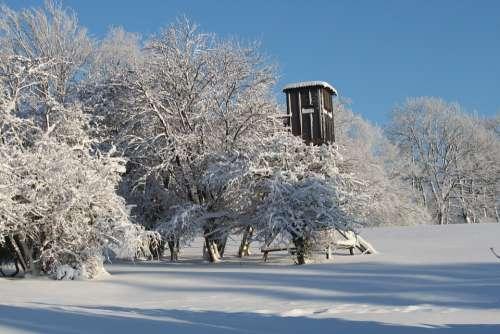 Winter Snow Wintry Winter Dream Snow Magic Trees