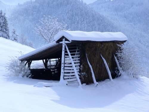 Winter White Hayrack Snow December