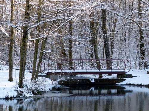 Winter Snow Trees Pond Bridge Snowy White Nature