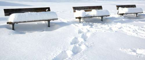 Winter Snow Bench Seat Bank Wintry Snowed In