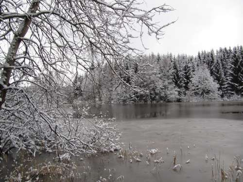 Winter Lake Nature Ice Cold Frozen Landscape