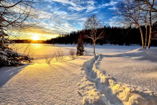 Winter Landscape Sunset Cold Snow Trees Nature
