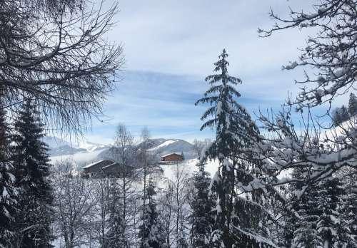 Wintry Alpbach Valley Alpine Snow Alm Mountains