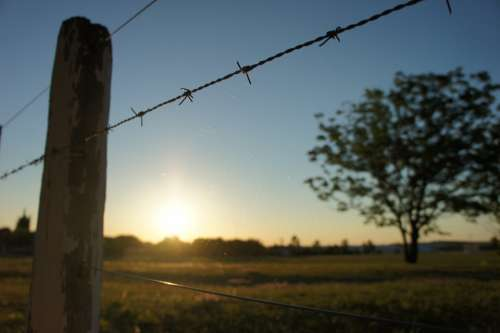 Wiring Fence Barbed Wire Barbed Wire Fence