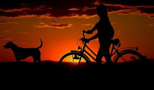 Woman Girl Bike Sunset Walk Abendstimmung Dog