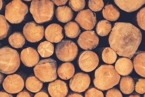 Wood Logs Lumber Woodpile Firewood Timber