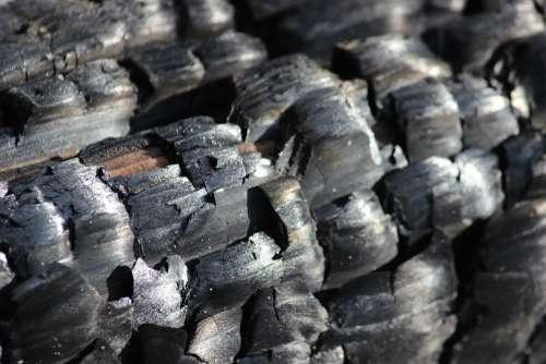 Wood Fire Carbon Campfire
