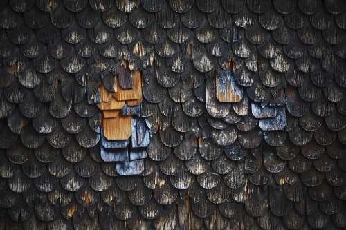 Wood Tiles Lining Wall