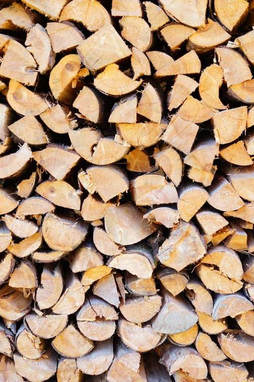 Wood Holzstapel Firewood Nature Growing Stock