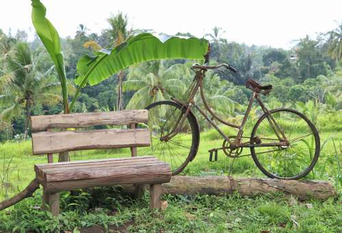 Work Of Art Bicycle Bench Landscape