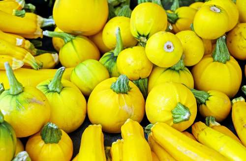 Zucchini Vegetables Yellow Vegetarian Healthy