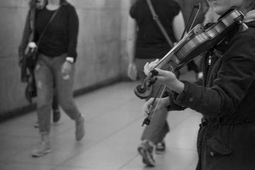Violin street music