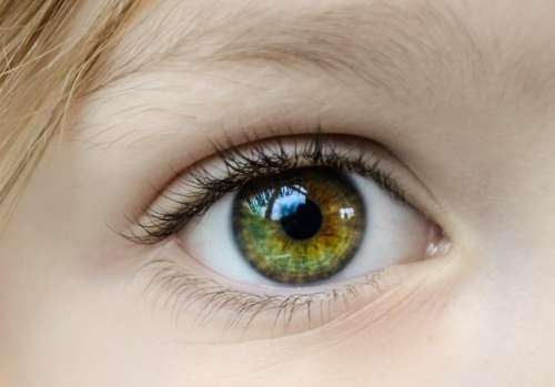 Little girls eye