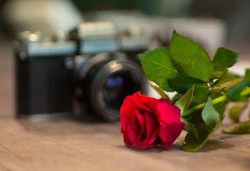 Camera Valentine