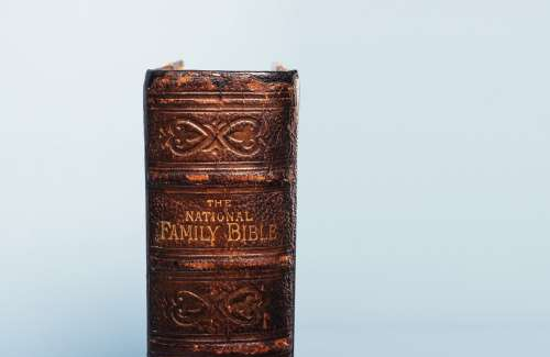 Weathered Spine Of The National Family Bible Photo