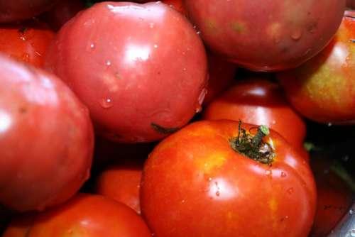 organic tomatoes organic gardening tomatoes tomato tomato variety