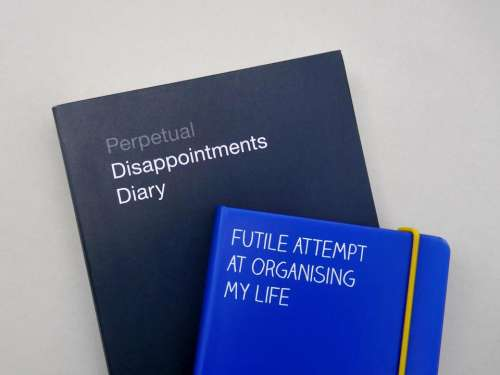 diary disappointment organise futile attempt