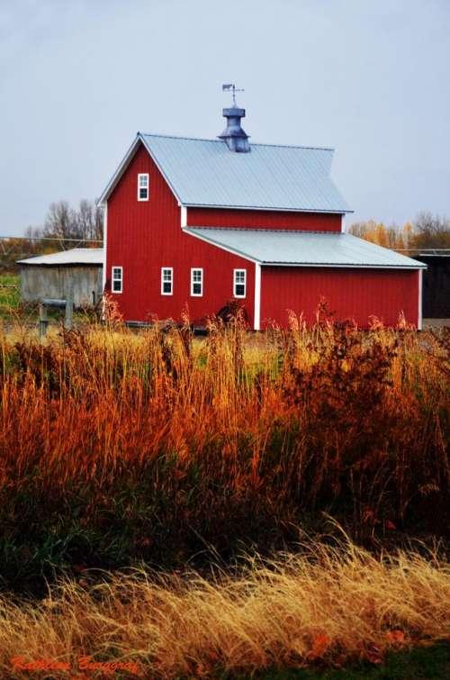 Barnyard barn farm country Autumn