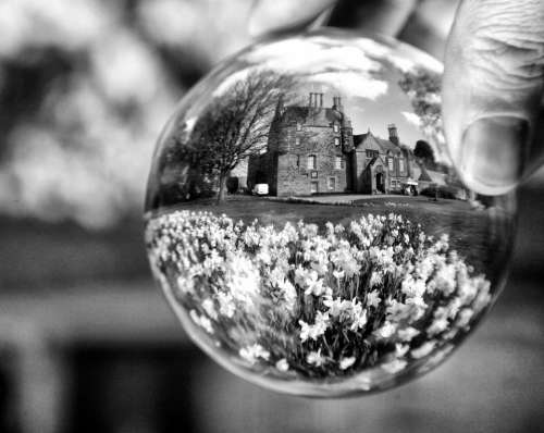 lensball glass ball world globe