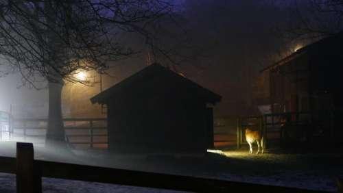 night time nighttime farm barn rural.country