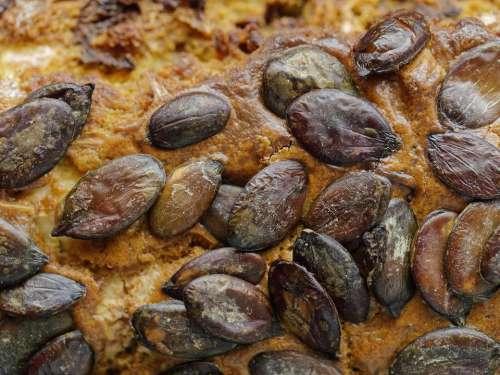 food salt pumpkin seeds grilled seeds of pumpkin cake with pumpkin seeds