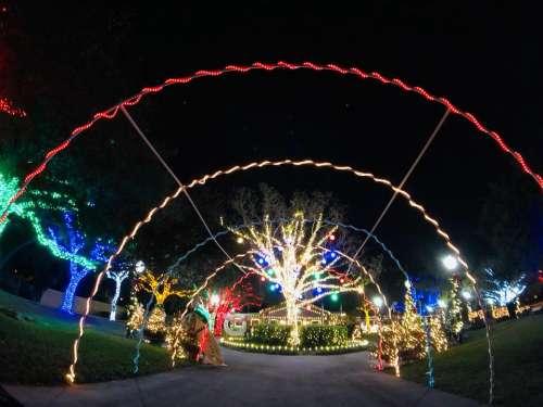 Decorative decorations lights