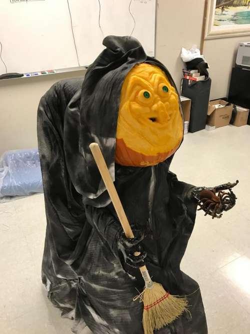 Jackolantern Halloween pumpkin carving pumpkin carving