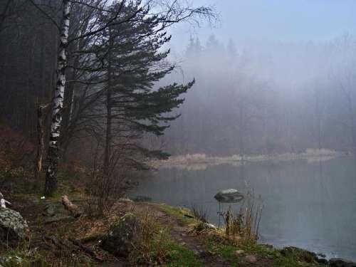 nature lake autumn fog trees