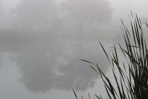 #fog #lagoon
