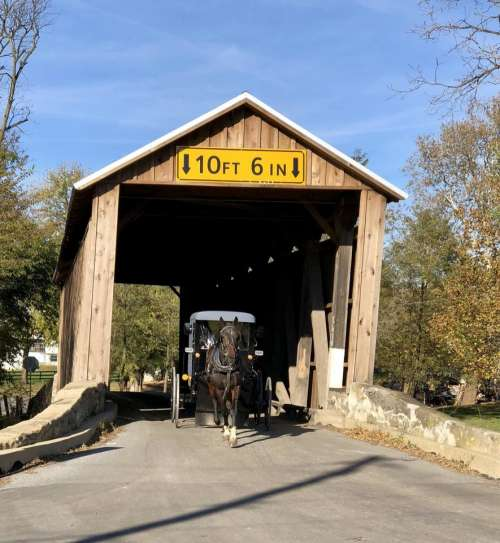 Covered Bridge bridge horse and wagon carriage