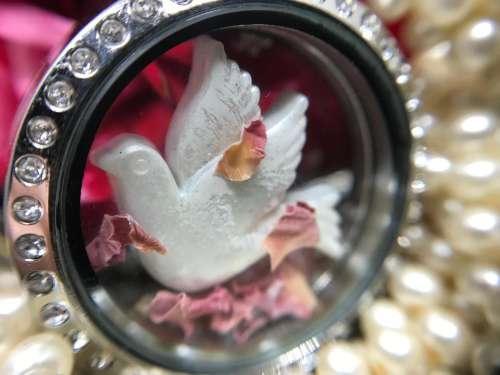 Ornament trinket decoration