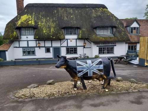 english pub country tourism cow