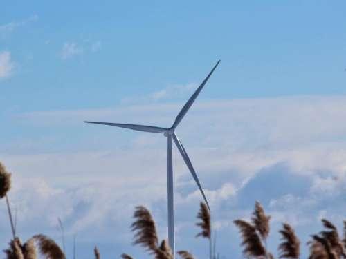 power turbine windmill electricity alternative