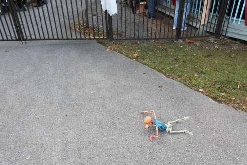 Halloween skeleton decoration fence asphalt