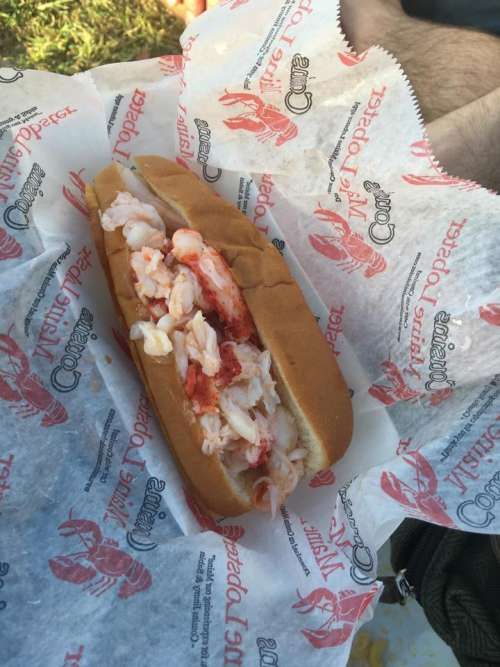 lobster lobster sandwich sandwich hoagie roll