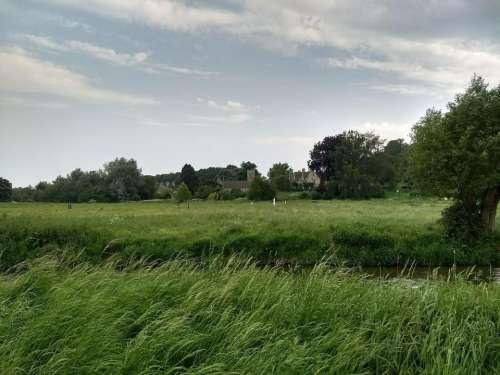 asthall oxfordshire mitford.village reeds sculptures