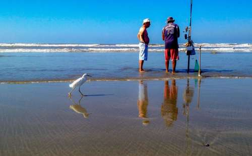 Seashore beach ocean fishing