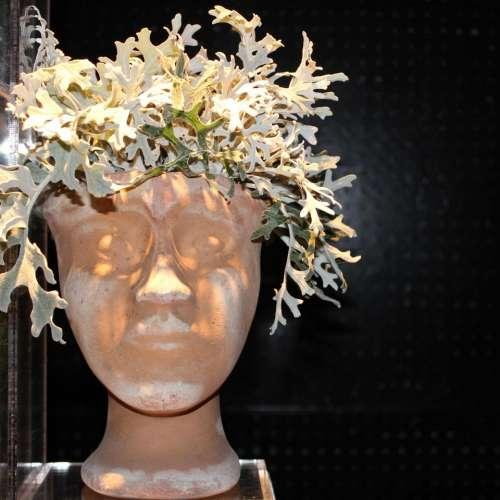 Wig head mannequin plant