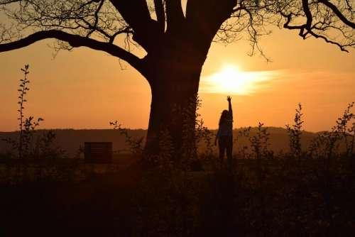 sunset sundown shadows twilight sun
