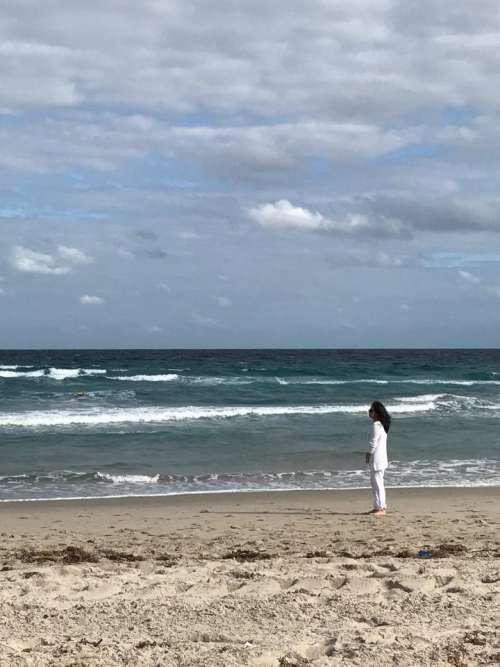 beach tropical seashore ocean