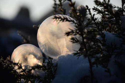 Soap bubbles frozen cold ice winter