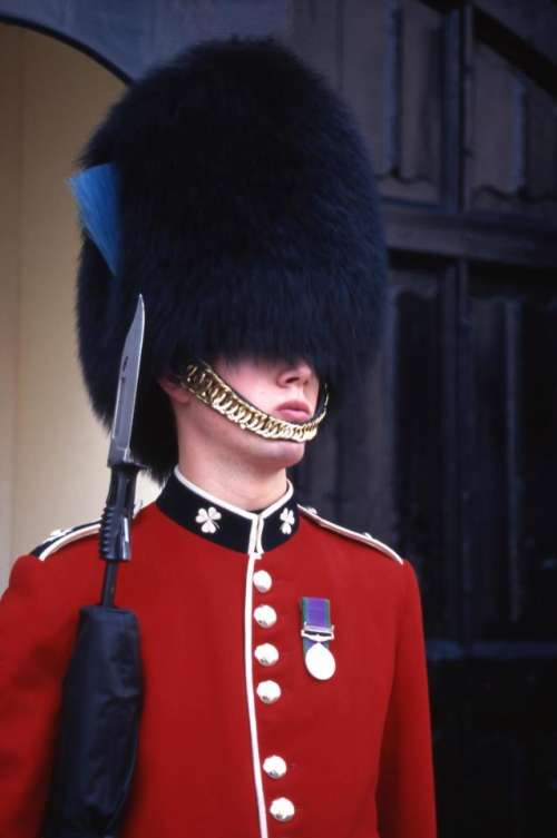palace guard London red coat   dark hat  soldier   Buckingham palace
