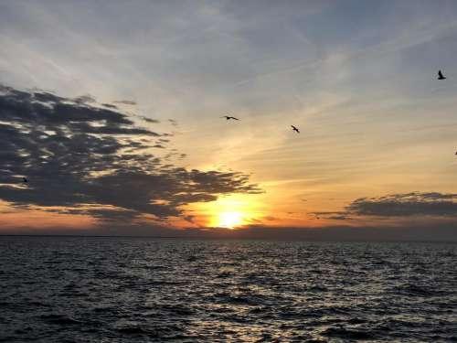 sunset ocean sunlight