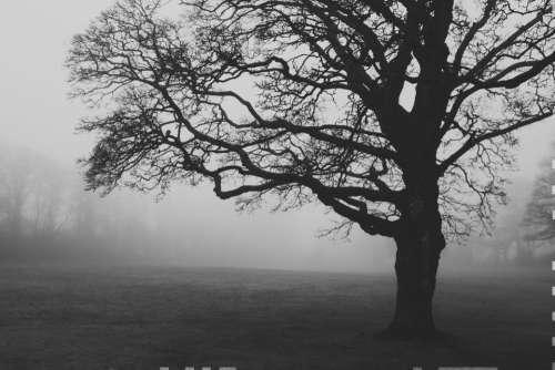 fog foggy spooky ghosts edinburgh