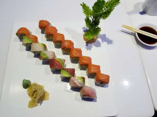 Japanese food restaurant sushi salmon