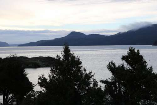 islands trees water Orcas Island Eastsound