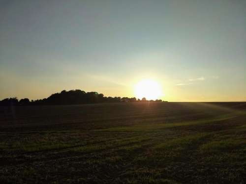 harvest field downs berkshire sunset